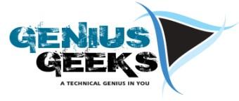 genius geeks logo