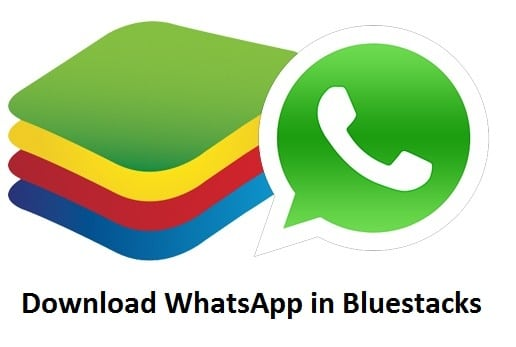 Bluestacks WhatsApp