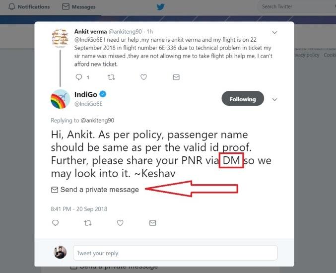 Indigo on Twitter Feed