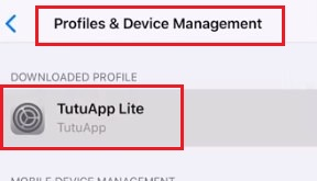 TutuApp Lite Settings in iOS 12
