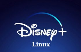 Disney Plus Linux Ubuntu